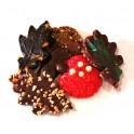 Herfst Chocolade Asortiment